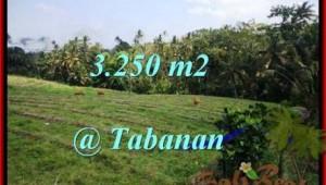 Affordable LAND IN Tabanan Selemadeg BALI FOR SALE TJTB208