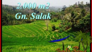 Affordable PROPERTY LAND FOR SALE IN TABANAN TJTB220