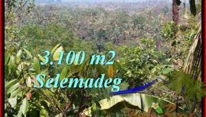 Exotic PROPERTY LAND IN TABANAN FOR SALE TJTB222