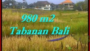 FOR SALE Affordable 980 m2 LAND IN TABANAN TJTB244