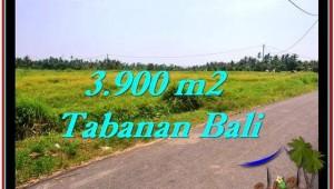 LAND IN Tabanan Selemadeg BALI FOR SALE TJTB258