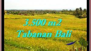 Affordable Tabanan Selemadeg BALI LAND FOR SALE TJTB259