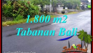 Exotic 1,800 m2 LAND IN TABANAN BALI FOR SALE TJTB321
