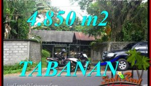 Affordable PROPERTY LAND FOR SALE IN TABANAN BALI TJTB330