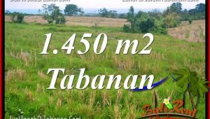 Magnificent LAND IN TABANAN FOR SALE TJTB343