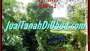 Magnificent Sentral Ubud BALI LAND FOR SALE TJUB417