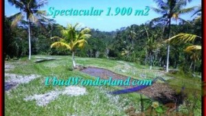 FOR SALE Affordable 1,900 m2 LAND IN UBUD TJUB505