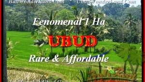 FOR SALE Exotic 10000 m2 LAND IN Ubud Pejeng TJUB456