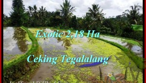 Magnificent LAND FOR SALE IN Ubud Tegalalang BALI TJUB471