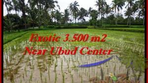 Affordable PROPERTY LAND SALE IN Ubud Tegalalang BALI TJUB477