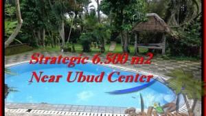 6,500 m2 LAND IN UBUD FOR SALE TJUB479