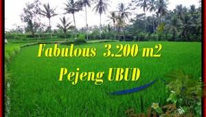 Beautiful PROPERTY LAND IN UBUD FOR SALE TJUB484