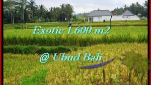 Affordable PROPERTY UBUD BALI 1,600 m2 LAND FOR SALE TJUB487