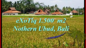 Exotic PROPERTY 1,500 m2 LAND SALE IN UBUD BALI TJUB488