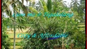 Affordable PROPERTY UBUD BALI 1,500 m2 LAND FOR SALE TJUB489
