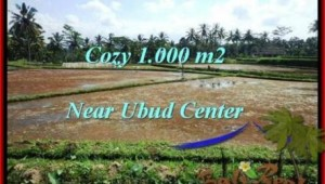Beautiful PROPERTY UBUD LAND FOR SALE TJUB501