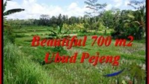 Magnificent UBUD BALI 700 m2 LAND FOR SALE TJUB534