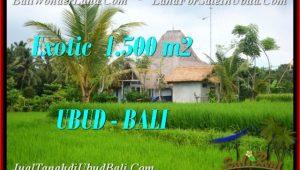 1,500 m2 LAND SALE IN UBUD BALI TJUB541