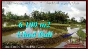 Exotic LAND IN UBUD FOR SALE TJUB547