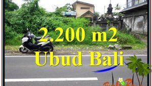 Affordable 2,200 m2 LAND IN UBUD BALI FOR SALE TJUB565