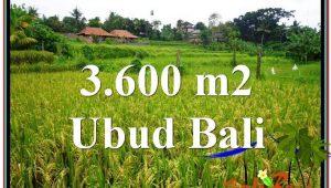 Exotic Sentral Ubud BALI LAND FOR SALE TJUB566