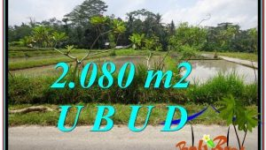 Exotic 2,080 m2 LAND FOR SALE IN UBUD BALI TJUB582
