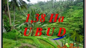 Exotic Ubud Tegalalang BALI LAND FOR SALE TJUB590