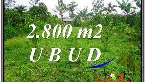 Affordable PROPERTY 2,800 m2 LAND SALE IN UBUD BALI TJUB592