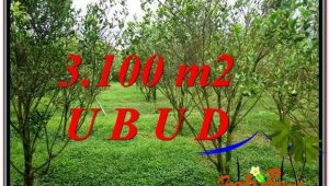 Affordable PROPERTY UBUD LAND FOR SALE TJUB593