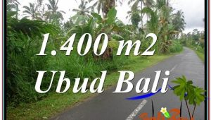 Beautiful LAND SALE IN Ubud Tegalalang BALI TJUB612