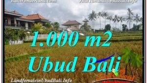 Magnificent Ubud Pejeng BALI LAND FOR SALE TJUB618