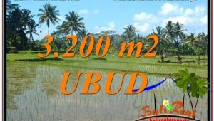 Exotic PROPERTY LAND FOR SALE IN UBUD TJUB628