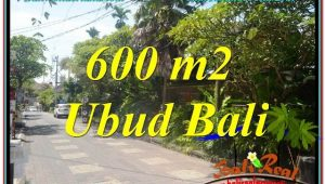 Magnificent LAND SALE IN Sentral / Ubud Center BALI TJUB644