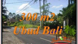 FOR SALE Beautiful LAND IN Sentral / Ubud Center BALI TJUB646