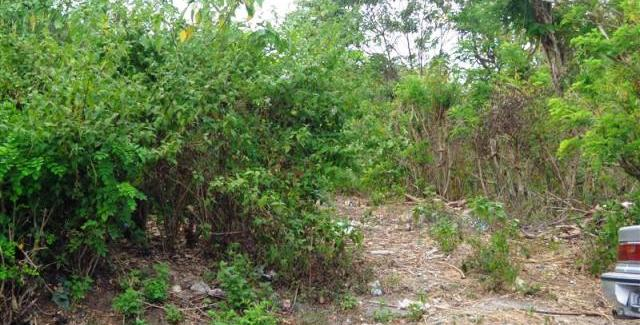 Land in Jimbaran Bali For sale 2,500 sqm in Jimbaran Ungasan