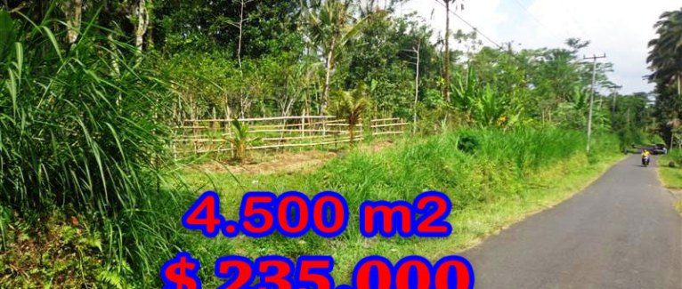 Land for sale in Bali, fabulous view in Ubud Pejeng – TJUB237