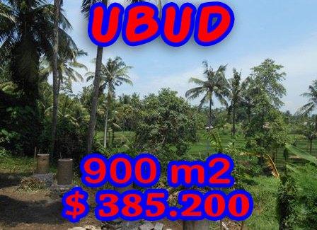 Land for sale in Ubud Bali 900 m2 in Ubud Center