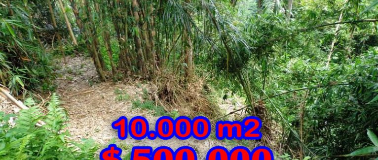 Land for sale in Ubud Bali 10.000 sqm in Ubud Tegalalang