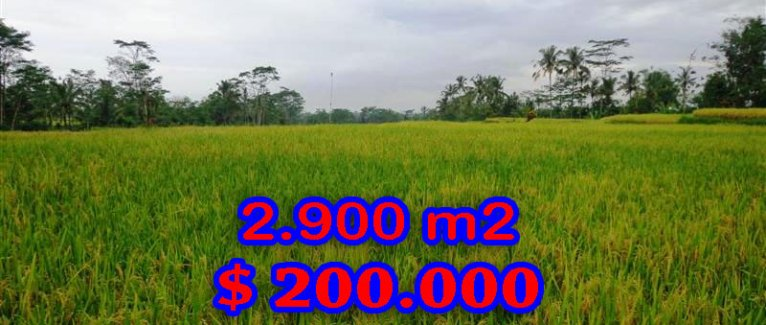 Land in Bali for sale, great view in Ubud Bali – TJUB244