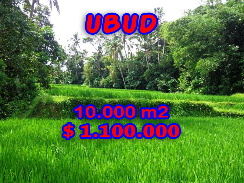 Land for sale in Ubud Bali 10.000 m2 with by the river