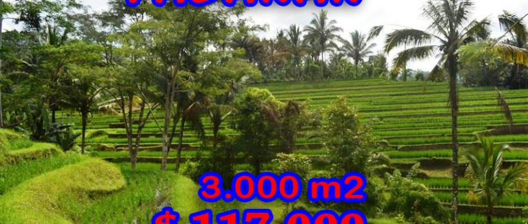 Land for sale in Tabanan 30 Ares in Tabanan