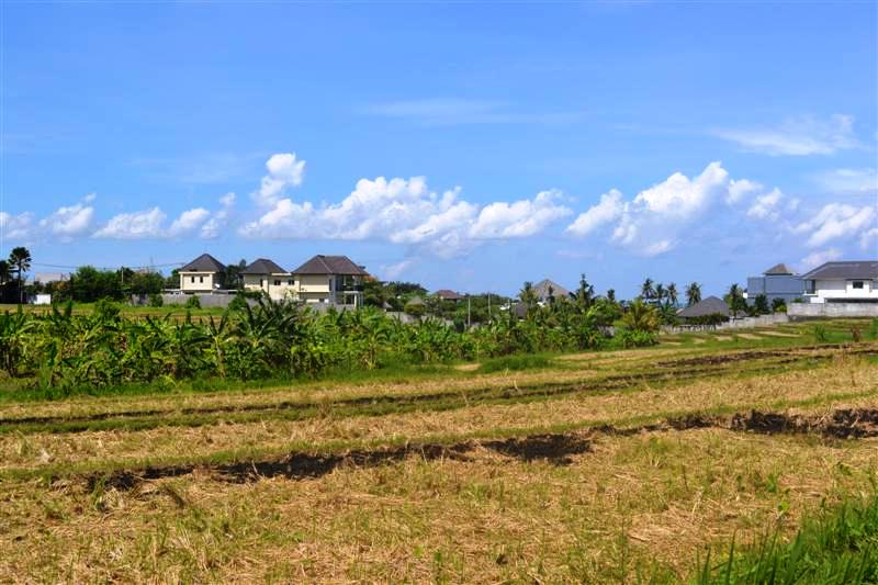 Land for sale in Canggu Bali 2,360 sqm in Canggu
