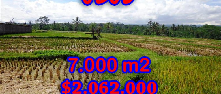 Land for sale in Bali, amazing view in Ubud Central – TJUB247