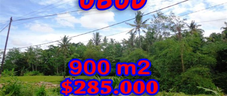 Bali land for sale, Fantastic view in Ubud Tegalalang  – TJUB259