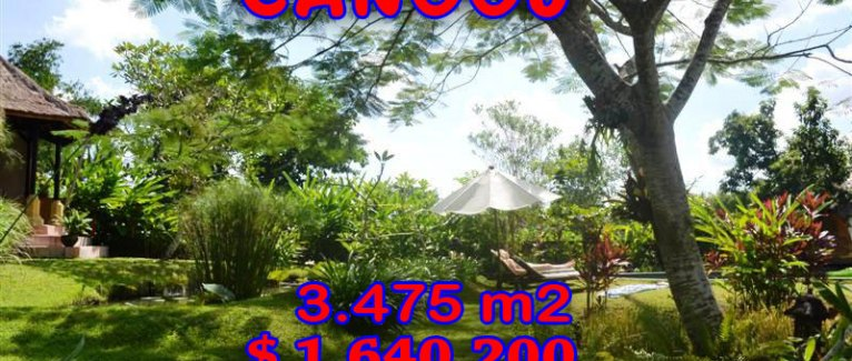 Land for sale in Bali, Fantastic view in Canggu Bali – TJCG101