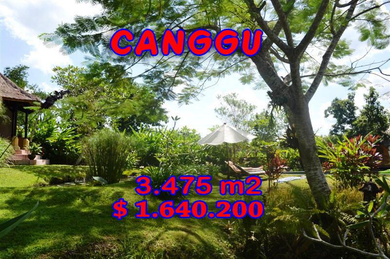 Land for sale in Bali, Fantastic view in Canggu Bali – TJCG101