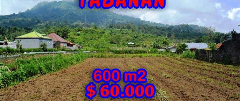 Land for sale in Bali, fabulous view in Tabanan Bedugul – TJTB058
