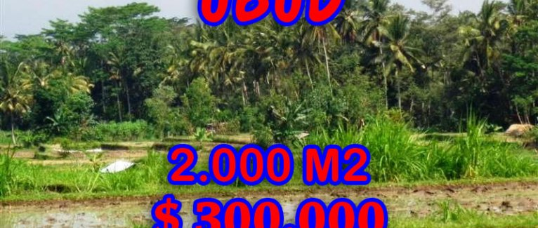 Land for sale in Bali, amazing view in Ubud Tampak siring – TJUB267