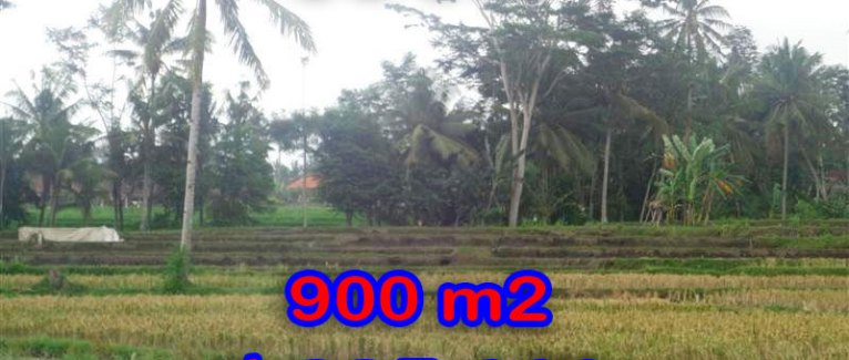 Land in Bali for sale, incredible view in Ubud Center Bali – TJUB280