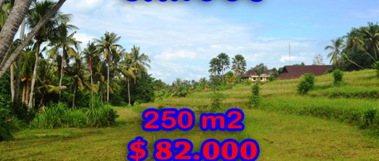 land in Bali for sale, extraordinary view in Canggu Pererenan – TJCG115